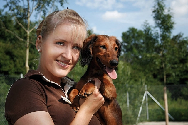 Luxus Hundehotel-Kette Canis Resort