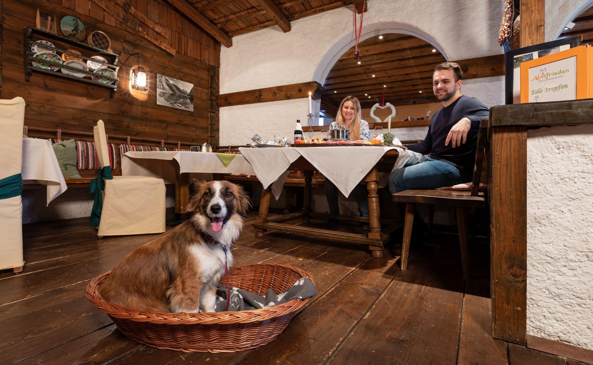 Restaurantbereich mit Hund